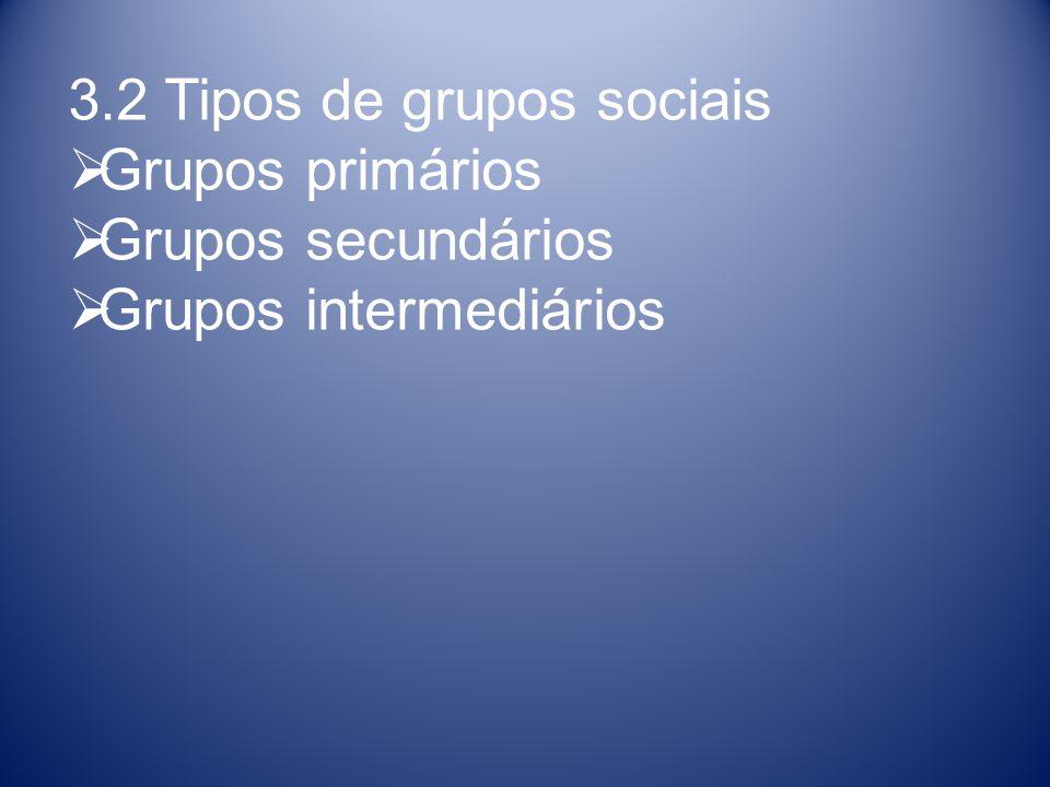 3.2 Tipos de grupos sociais