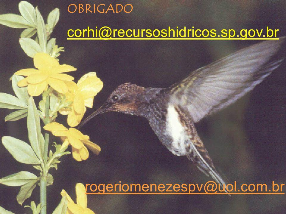 OBRIGADO corhi@recursoshidricos.sp.gov.br rogeriomenezespv@uol.com.br