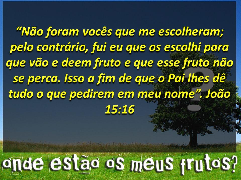 Não foram vocês que me escolheram; pelo contrário, fui eu que os escolhi para que vão e deem fruto e que esse fruto não se perca.