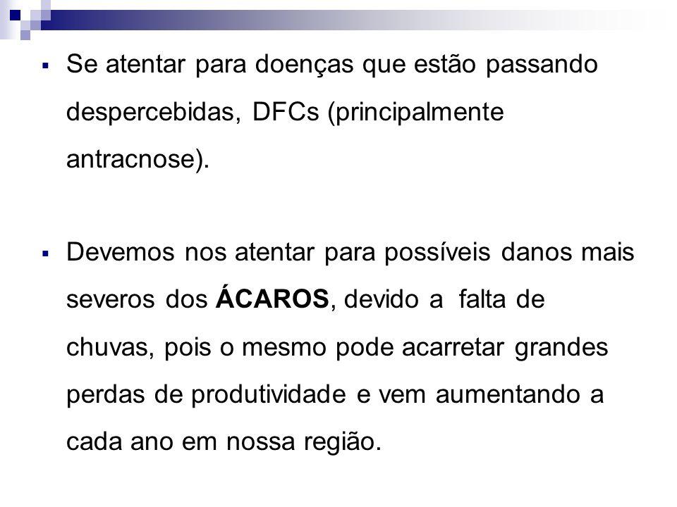 Se atentar para doenças que estão passando despercebidas, DFCs (principalmente antracnose).