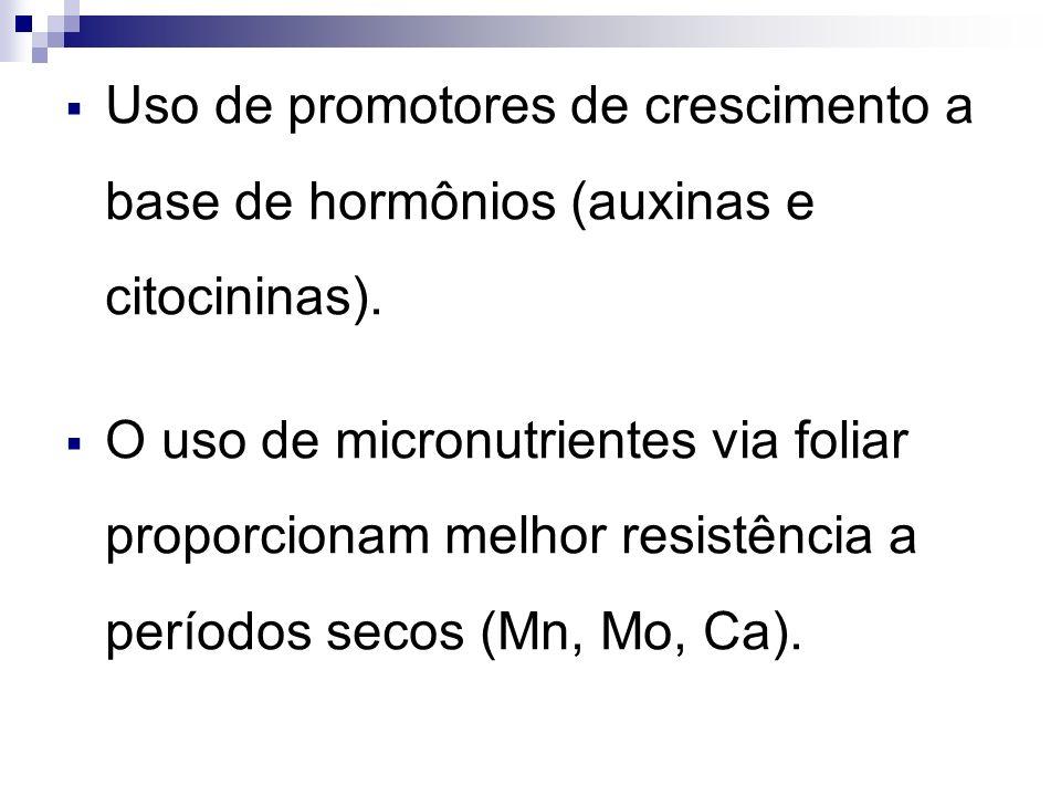 Uso de promotores de crescimento a base de hormônios (auxinas e citocininas).