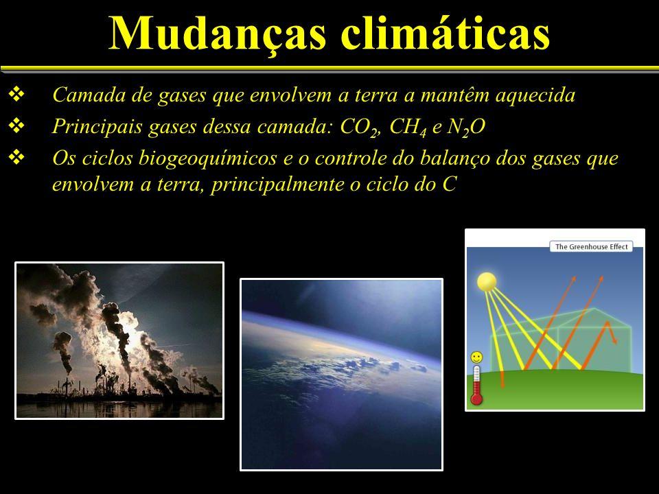 Mudanças climáticasCamada de gases que envolvem a terra a mantêm aquecida. Principais gases dessa camada: CO2, CH4 e N2O.
