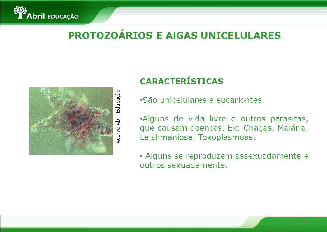 PROTOZOÁRIOS E AlGAS UNICELULARES