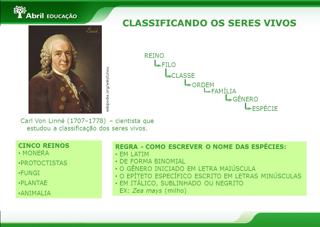 CLASSIFICANDO OS SERES VIVOS