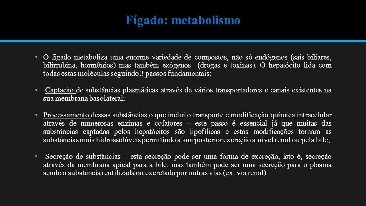 Fígado: metabolismo