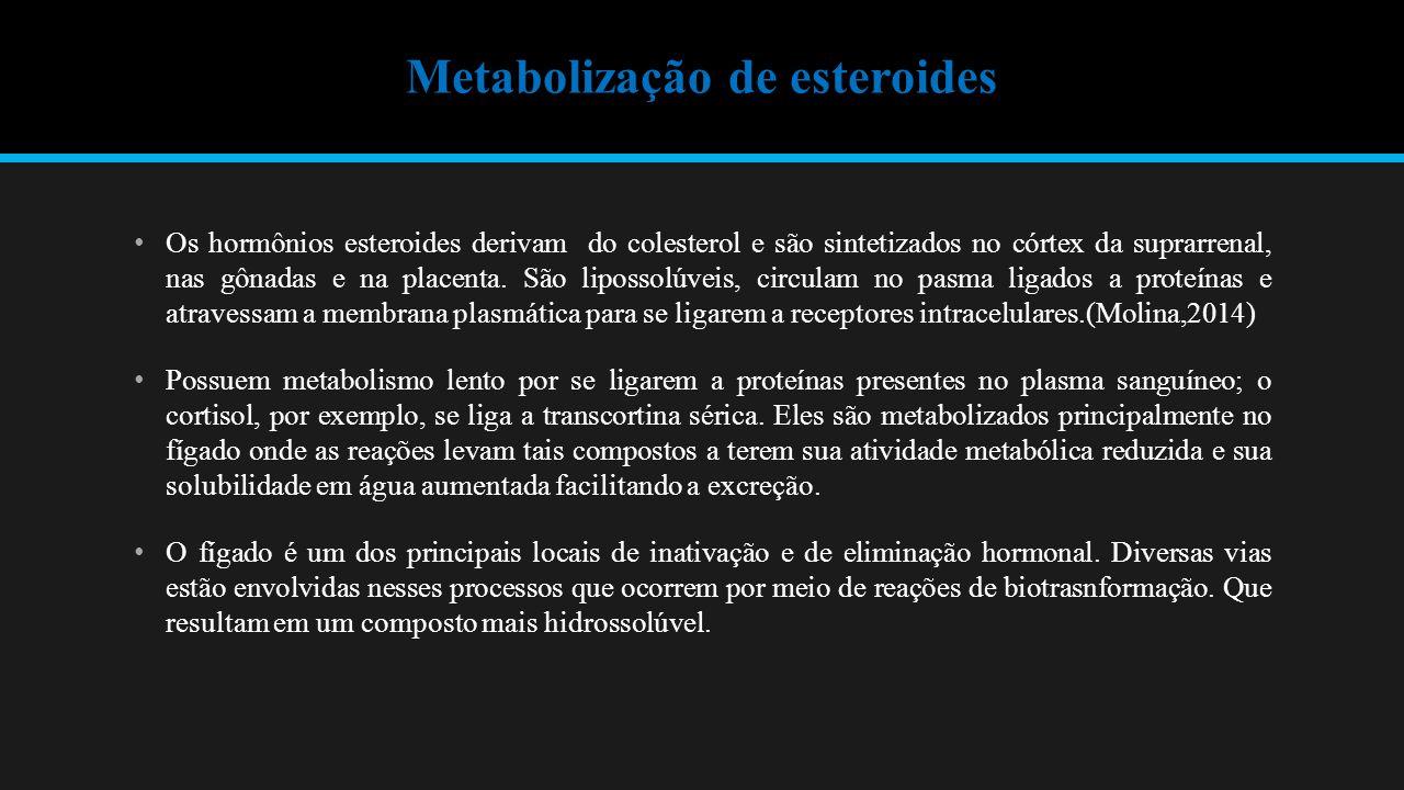 Metabolização de esteroides