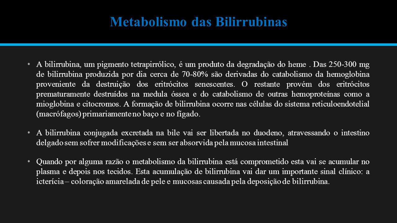Metabolismo das Bilirrubinas