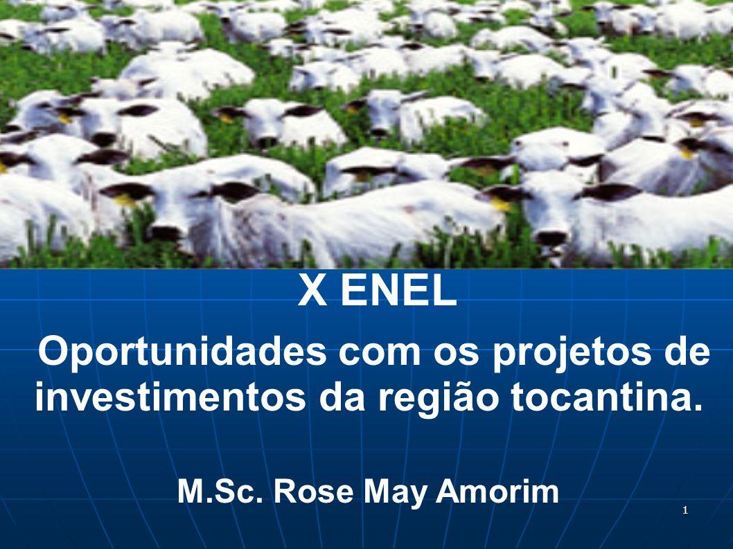Oportunidades com os projetos de investimentos da região tocantina.