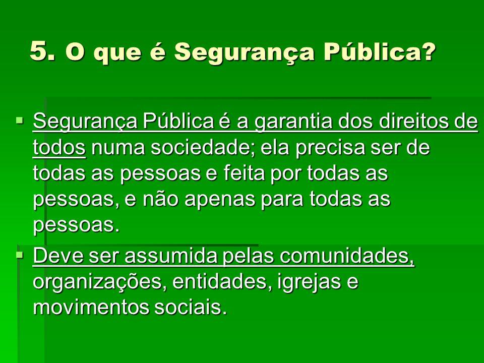 5. O que é Segurança Pública