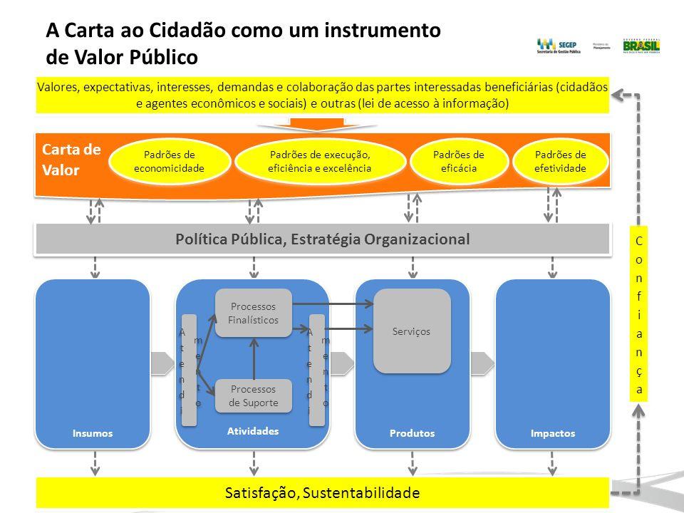 Política Pública, Estratégia Organizacional