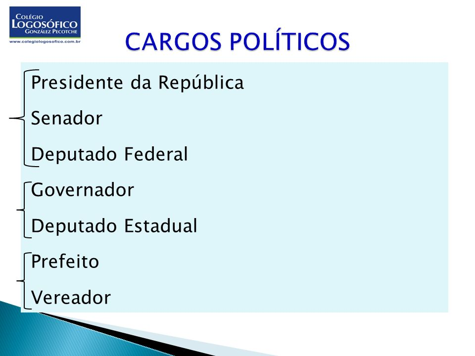 CARGOS POLÍTICOSPresidente da República Senador Deputado Federal Governador Deputado Estadual Prefeito Vereador