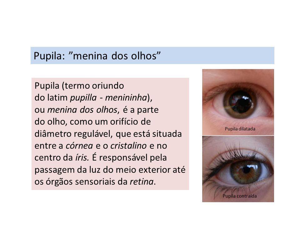 Pupila: menina dos olhos