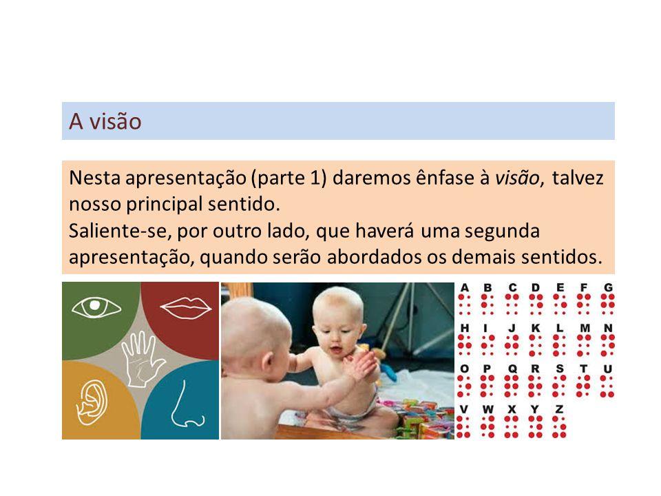 A visão Nesta apresentação (parte 1) daremos ênfase à visão, talvez nosso principal sentido.