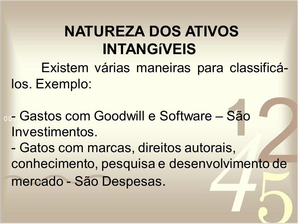 NATUREZA DOS ATIVOS INTANGíVEIS