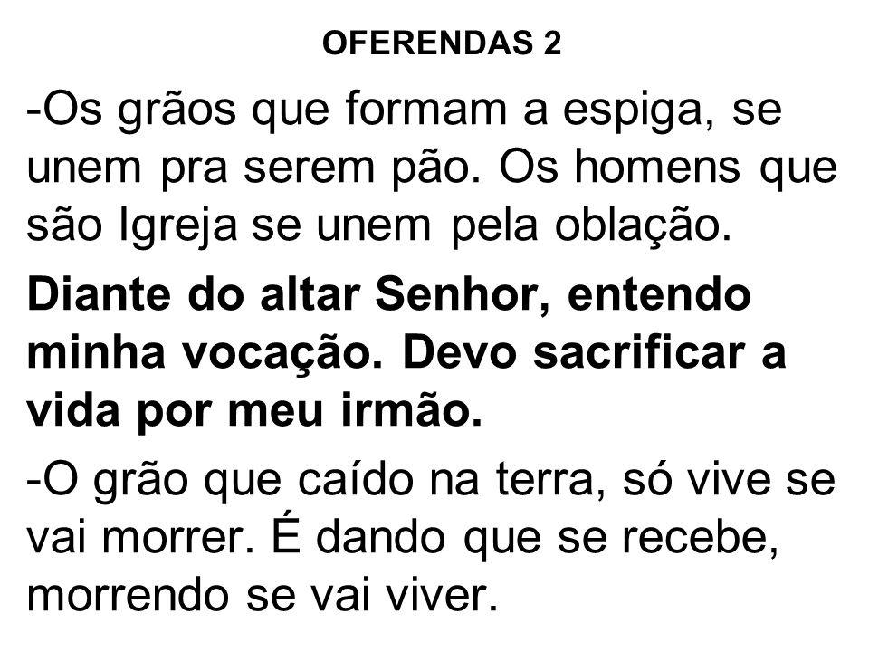 OFERENDAS 2