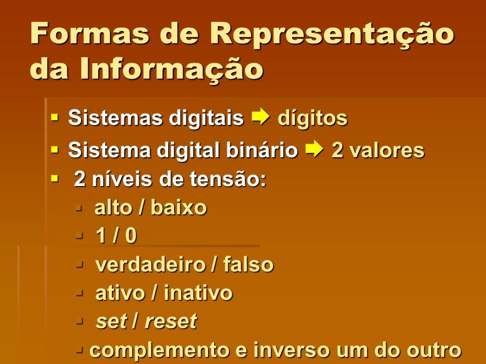 Formas de Representação da Informação