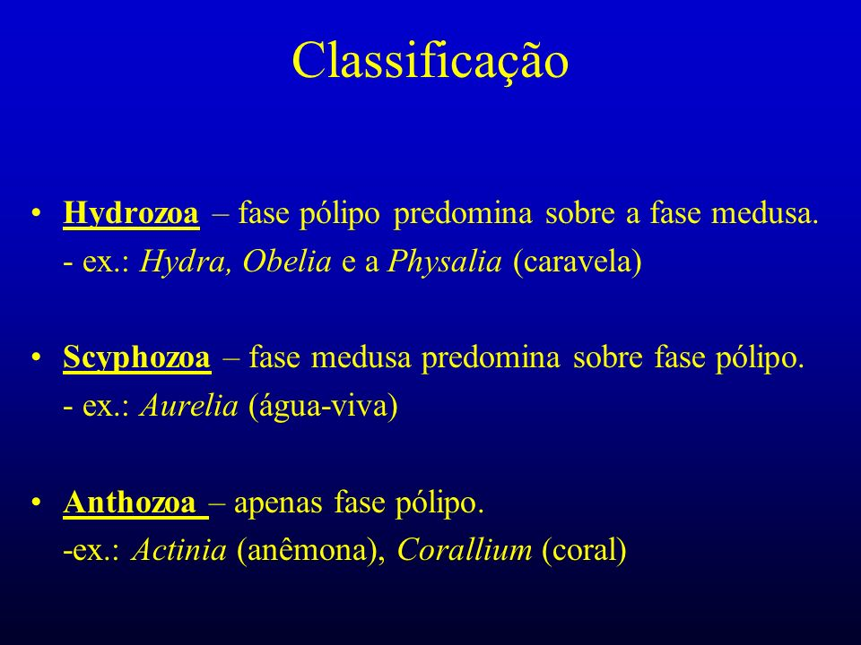 Classificação Hydrozoa – fase pólipo predomina sobre a fase medusa.