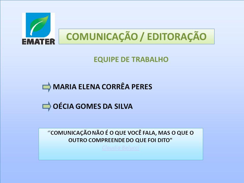 COMUNICAÇÃO / EDITORAÇÃO