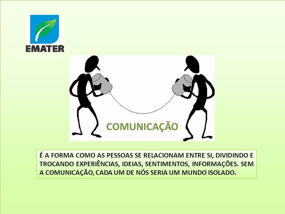 3 COMUNICAÇÃO.