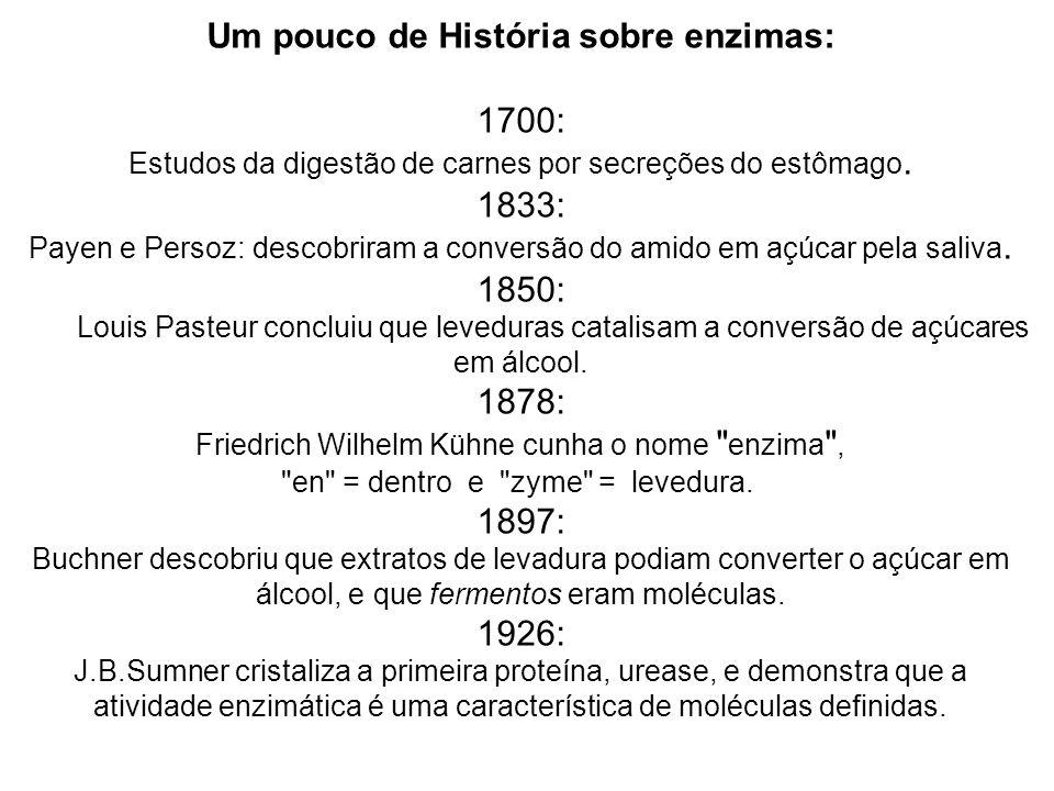 Um pouco de História sobre enzimas: