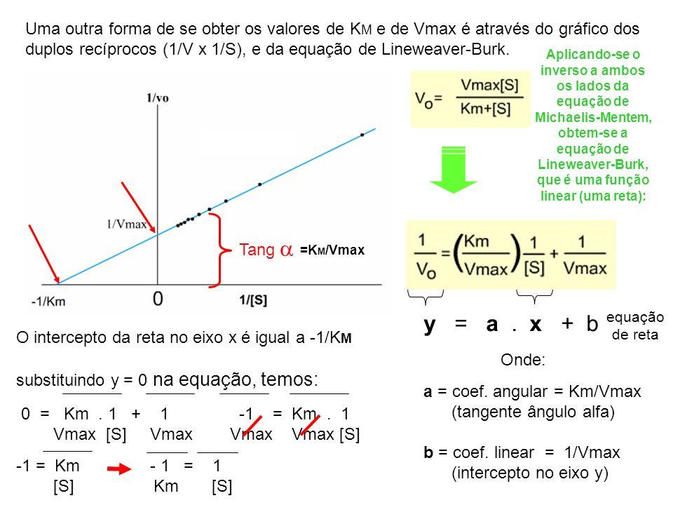 Uma outra forma de se obter os valores de KM e de Vmax é através do gráfico dos duplos recíprocos (1/V x 1/S), e da equação de Lineweaver-Burk.
