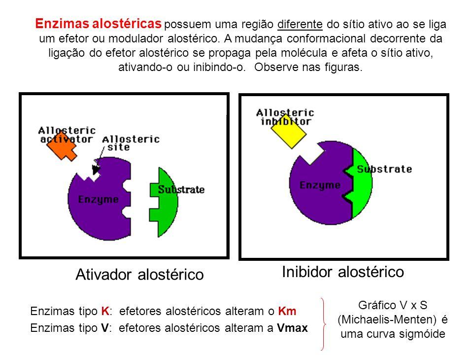 Gráfico V x S (Michaelis-Menten) é uma curva sigmóide