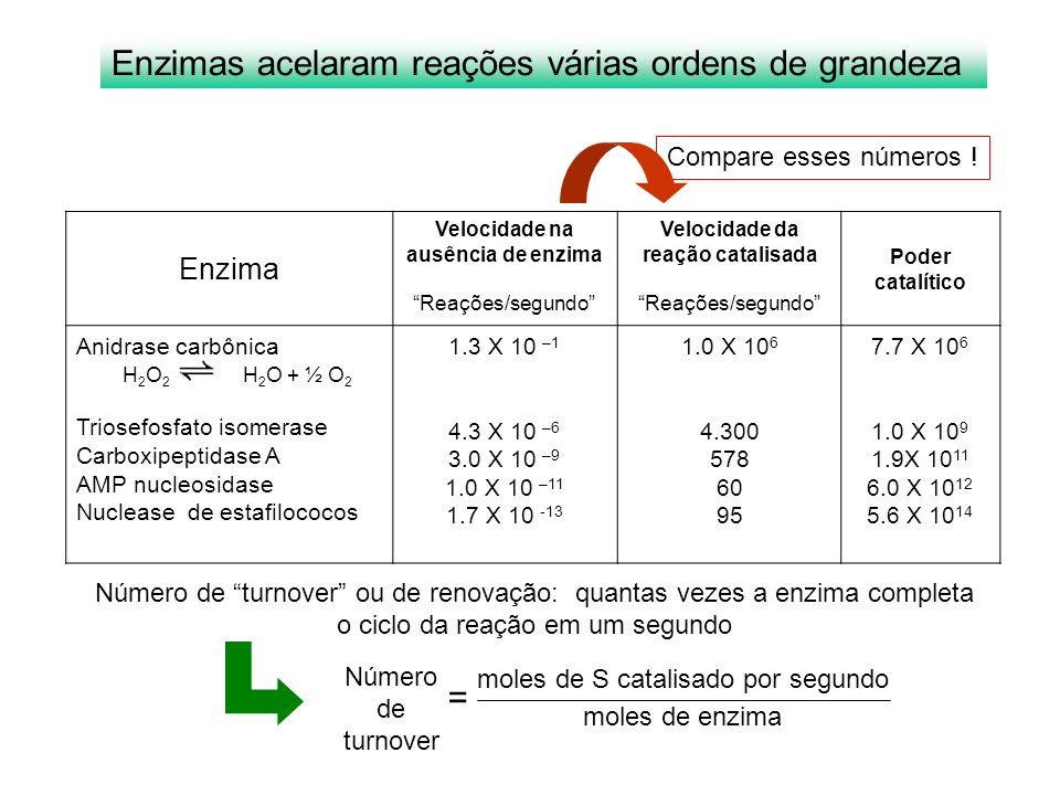 Velocidade na ausência de enzima Velocidade da reação catalisada