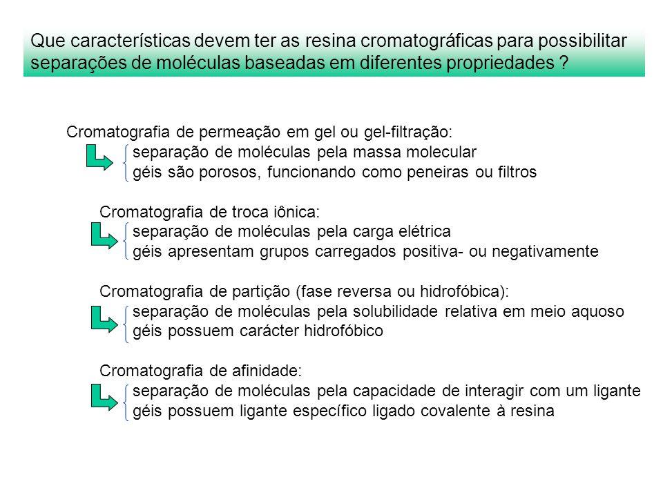 Que características devem ter as resina cromatográficas para possibilitar separações de moléculas baseadas em diferentes propriedades