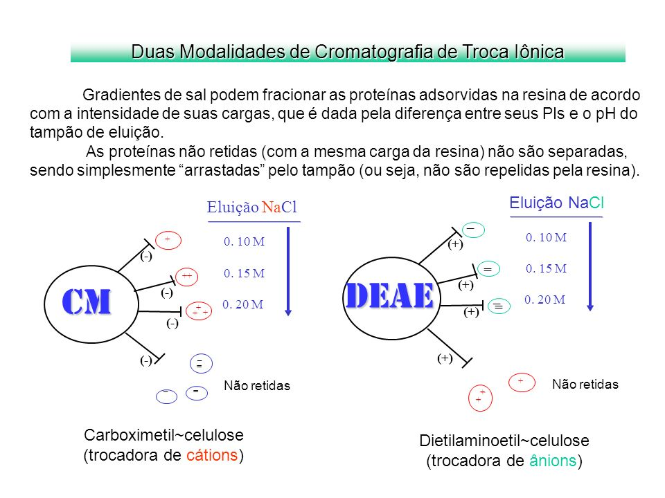 DEAE CM Duas Modalidades de Cromatografia de Troca Iônica Eluição NaCl