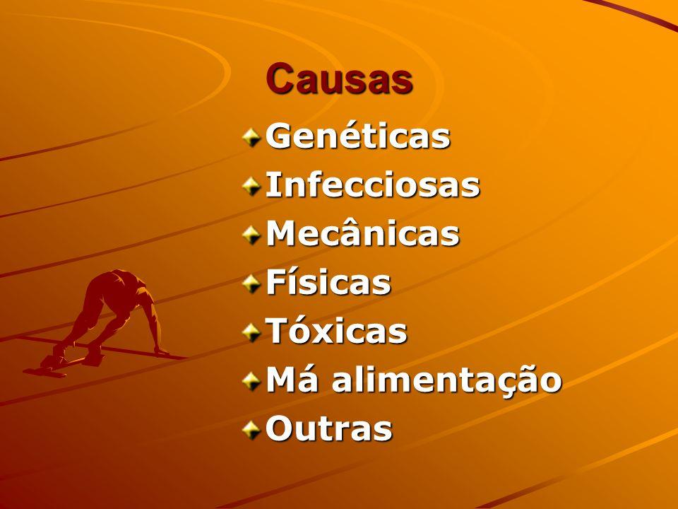 Causas Genéticas Infecciosas Mecânicas Físicas Tóxicas Má alimentação