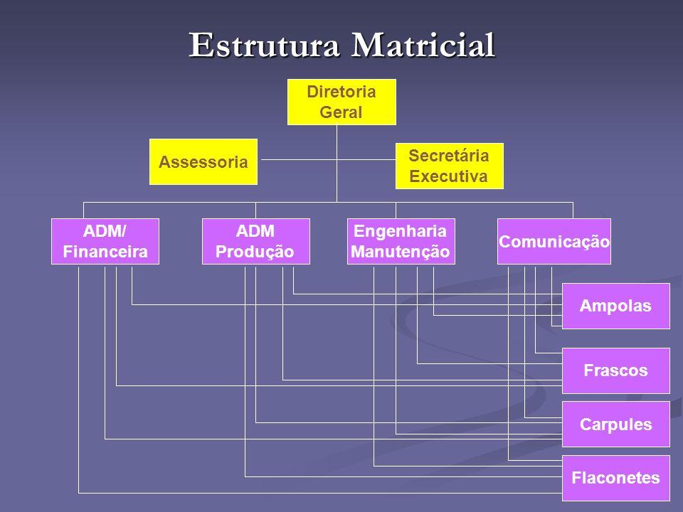 Estrutura Matricial Diretoria Geral Assessoria Secretária Executiva
