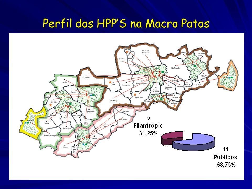 Perfil dos HPP'S na Macro Patos