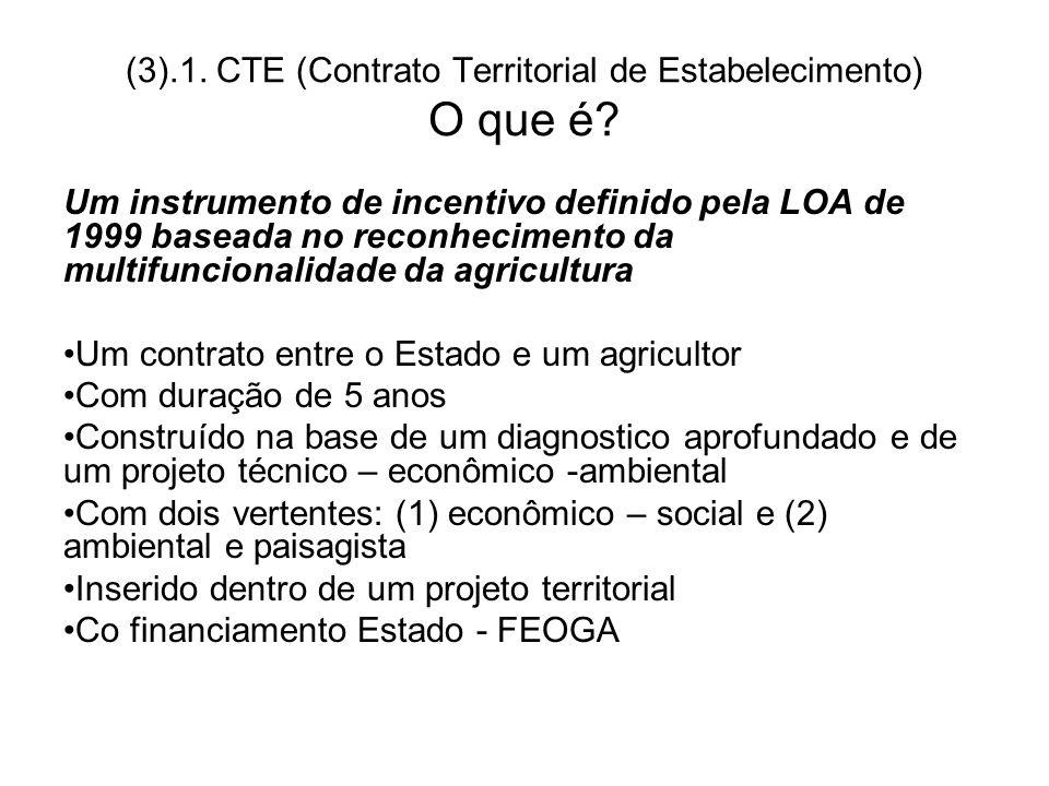 (3).1. CTE (Contrato Territorial de Estabelecimento) O que é