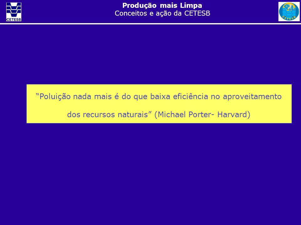 Poluição nada mais é do que baixa eficiência no aproveitamento dos recursos naturais (Michael Porter- Harvard)