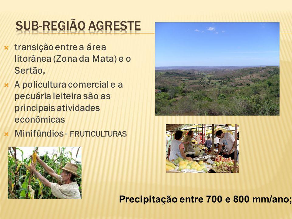 Sub-região Agreste transição entre a área litorânea (Zona da Mata) e o Sertão,