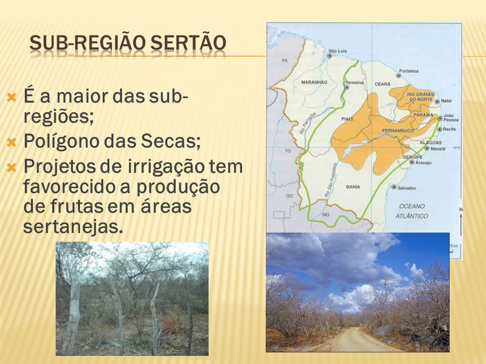 Sub-região Sertão É a maior das sub-regiões; Polígono das Secas;