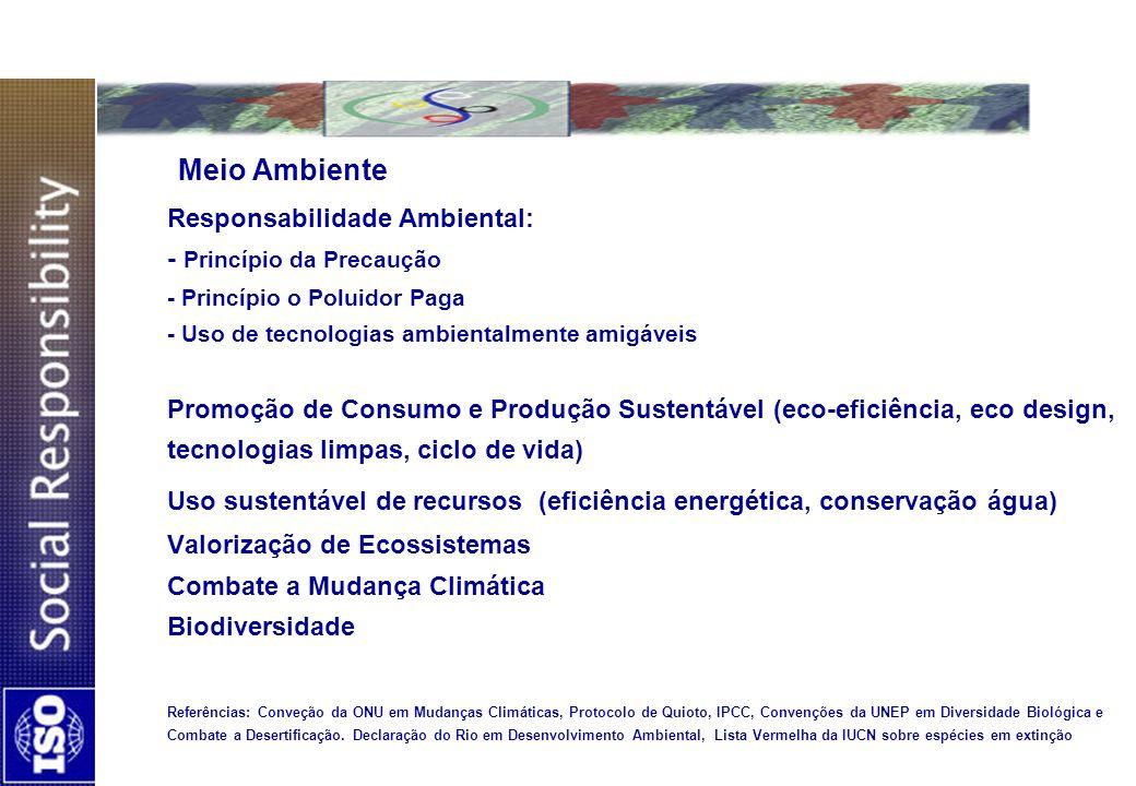Meio Ambiente Responsabilidade Ambiental: - Princípio da Precaução - Princípio o Poluidor Paga - Uso de tecnologias ambientalmente amigáveis Promoção de Consumo e Produção Sustentável (eco-eficiência, eco design, tecnologias limpas, ciclo de vida) Uso sustentável de recursos (eficiência energética, conservação água) Valorização de Ecossistemas Combate a Mudança Climática Biodiversidade Referências: Conveção da ONU em Mudanças Climáticas, Protocolo de Quioto, IPCC, Convenções da UNEP em Diversidade Biológica e Combate a Desertificação.