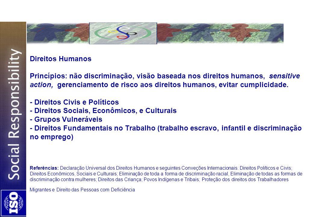 Direitos Humanos Princípios: não discriminação, visão baseada nos direitos humanos, sensitive action, gerenciamento de risco aos direitos humanos, evitar cumplicidade.