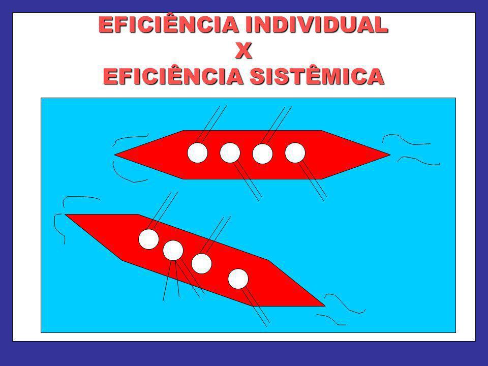 EFICIÊNCIA INDIVIDUAL X EFICIÊNCIA SISTÊMICA