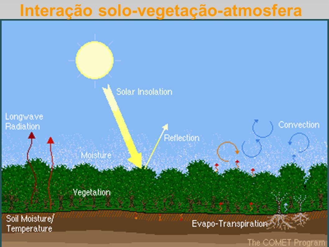 Interação solo-vegetação-atmosfera