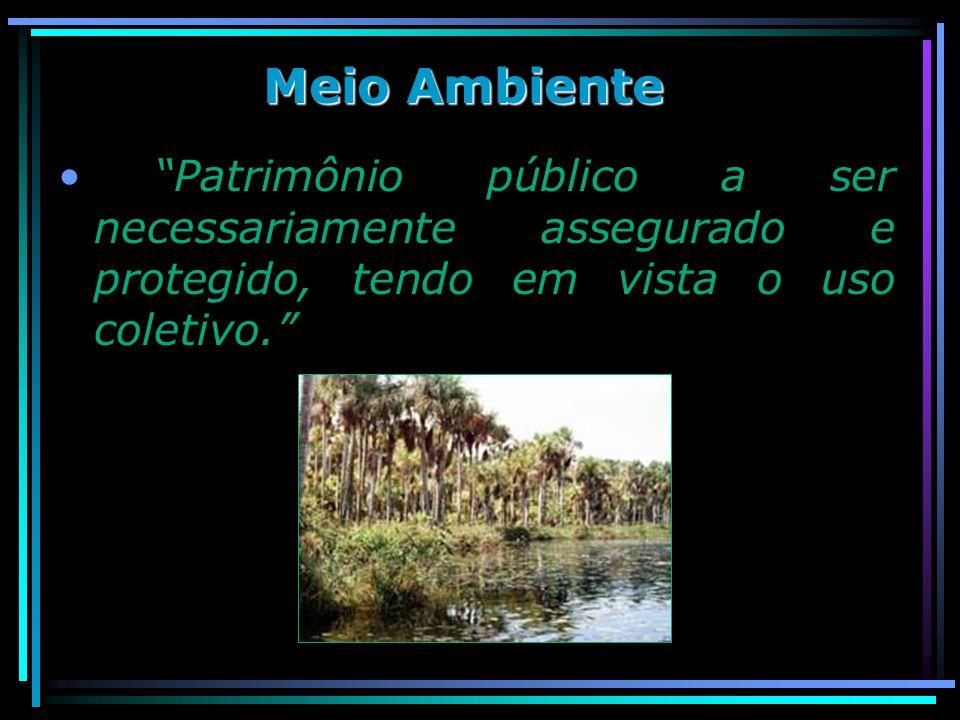 Meio Ambiente Patrimônio público a ser necessariamente assegurado e protegido, tendo em vista o uso coletivo.