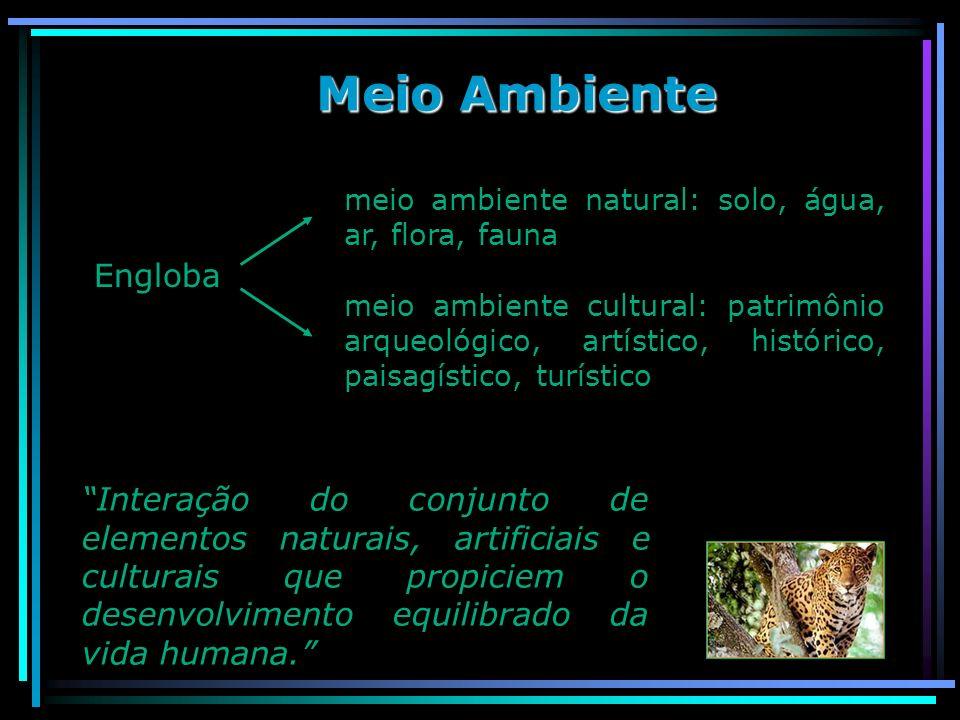Meio Ambiente Engloba. meio ambiente natural: solo, água, ar, flora, fauna.