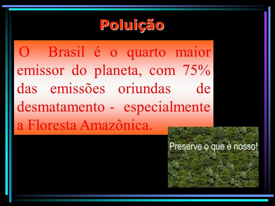 PoluiçãoO Brasil é o quarto maior emissor do planeta, com 75% das emissões oriundas de desmatamento - especialmente a Floresta Amazônica.