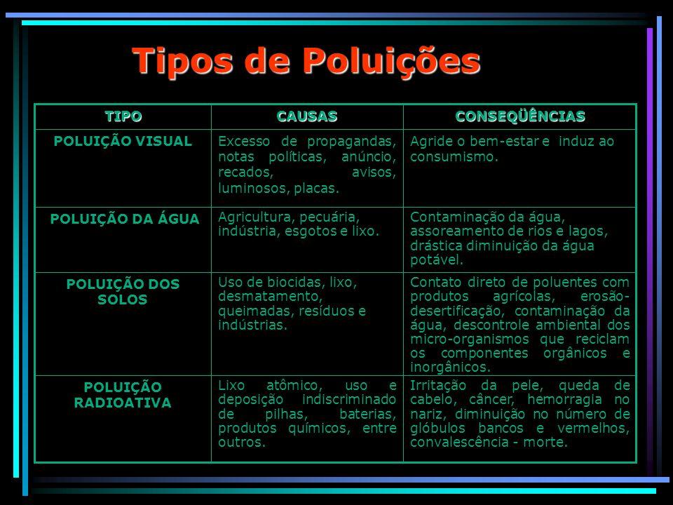 Tipos de Poluições