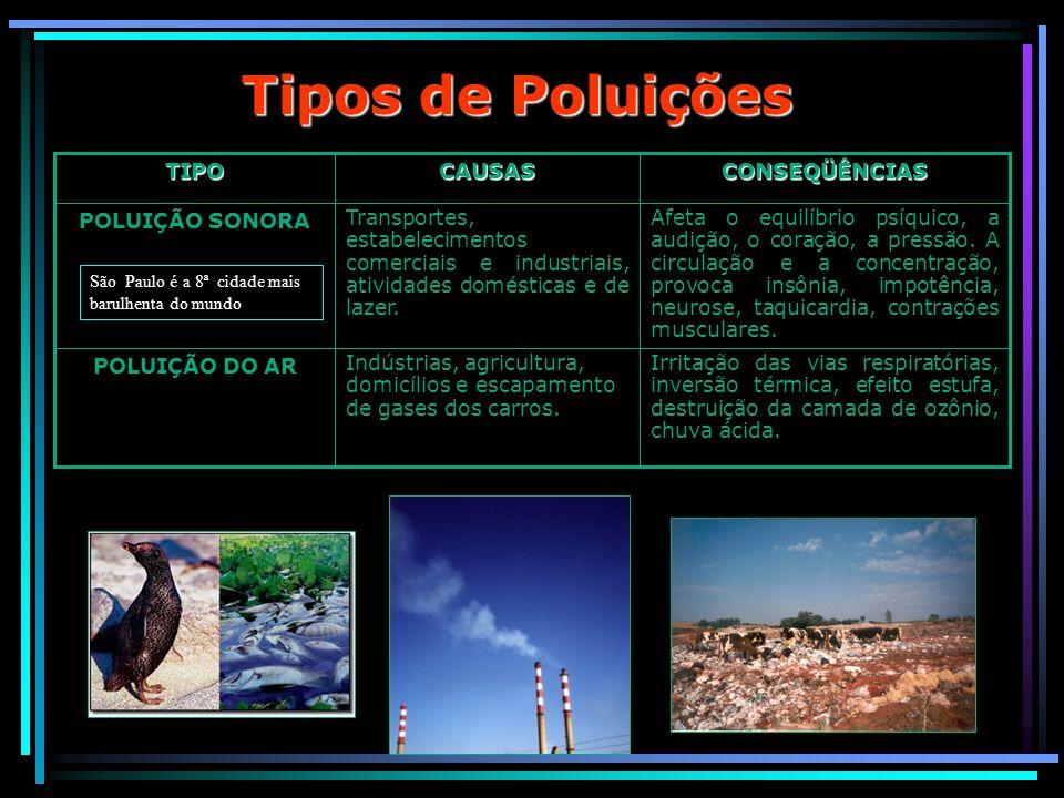 Tipos de Poluições CONSEQÜÊNCIAS CAUSAS TIPO