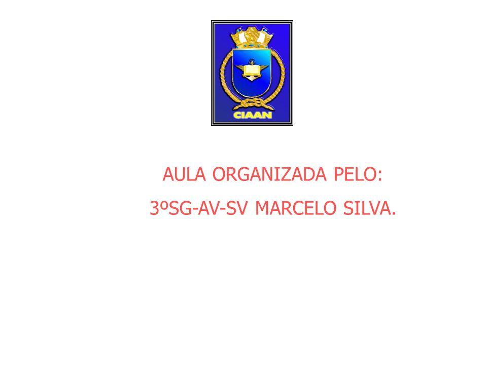 3ºSG-AV-SV MARCELO SILVA.