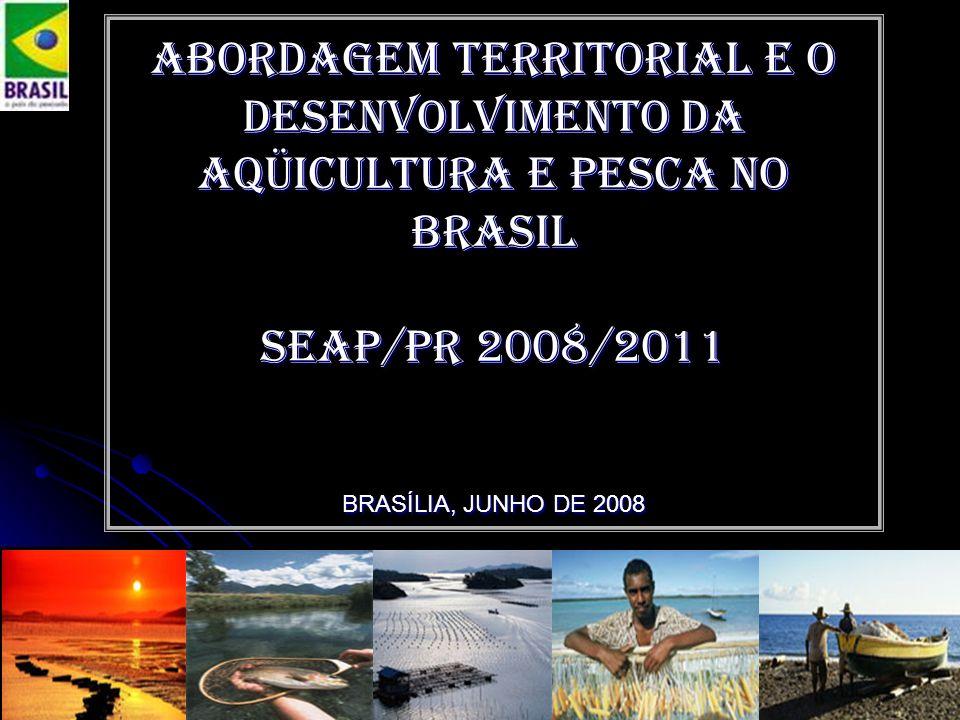 Abordagem territorial e o Desenvolvimento da aqüicultura e pesca no Brasil Seap/pr 2008/2011 BRASÍLIA, JUNHO DE 2008