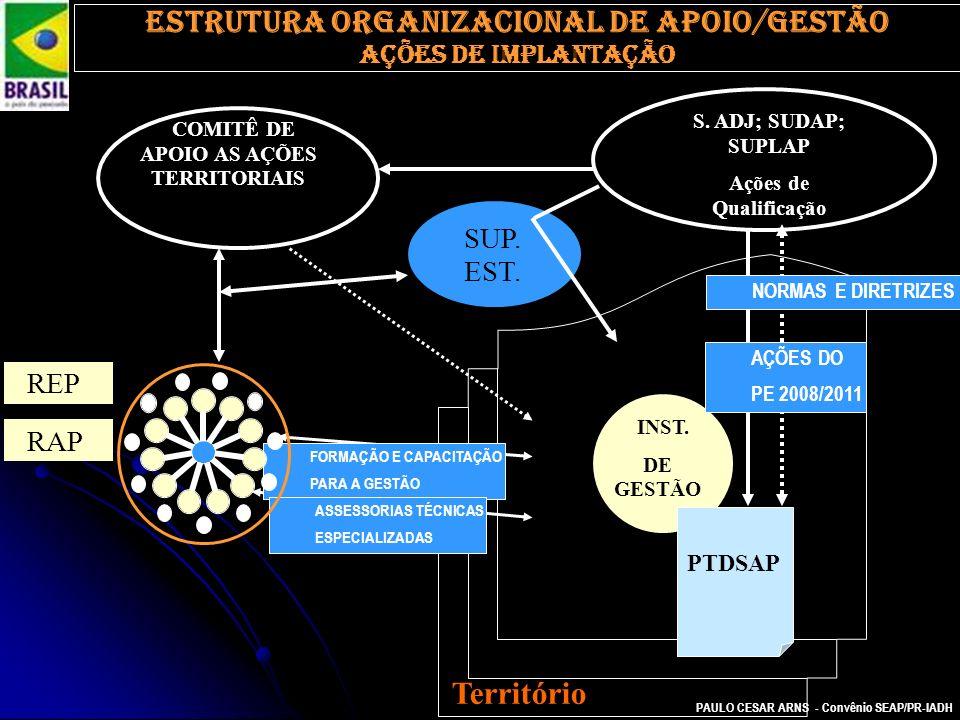 Estrutura organizacional de apoio/gestão
