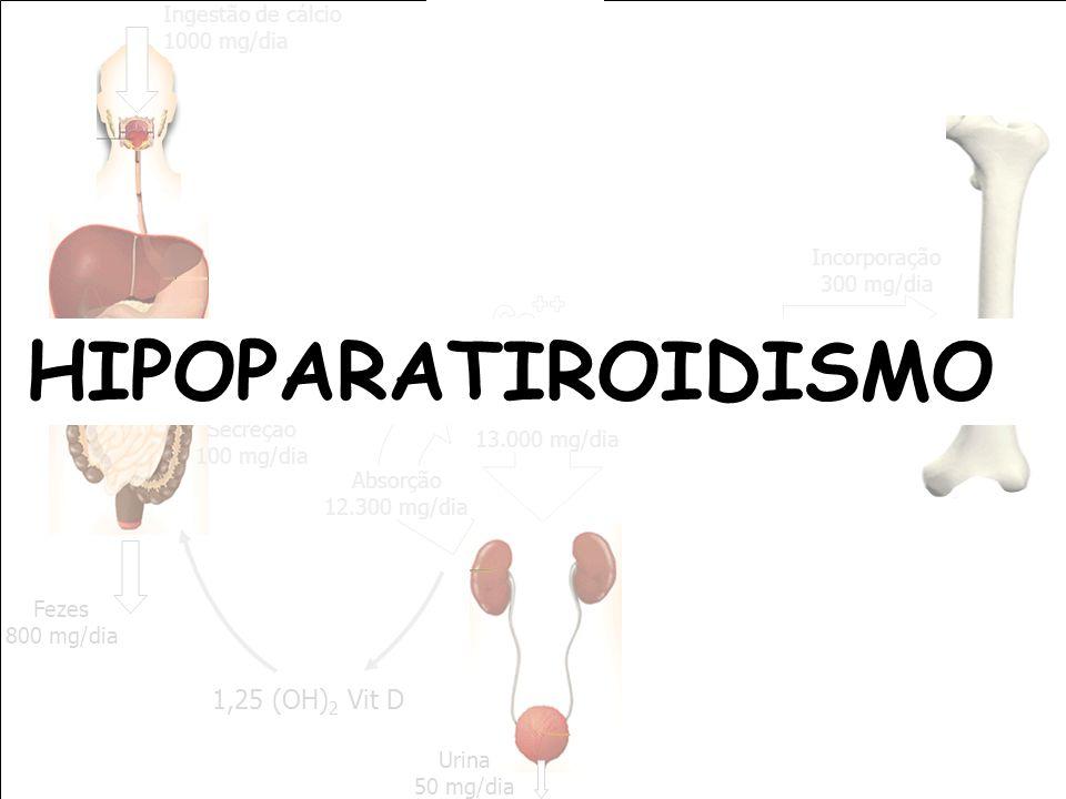 HIPOPARATIROIDISMO ++ Ca 1,25 (OH)2 Vit D Ingestão de cálcio