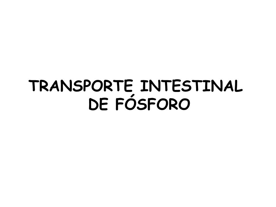 TRANSPORTE INTESTINAL